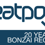 20 YEARS BONZAI AT BEATPORT