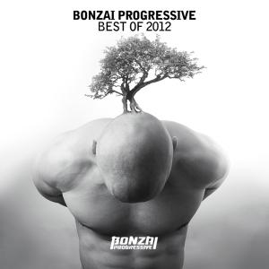 BonzaiProgressiveBestOf2012_870x870