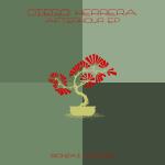 DIEGO HERRERA – AFTERHOUR EP (BONZAI BASIKS)