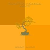MARTIN MERKEL – ABYSS (BONZAI BASIKS)
