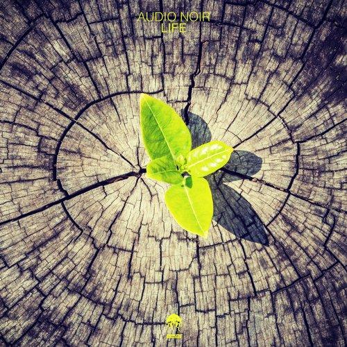 AUDIO NOIR – LIFE (BONZAI PROGRESSIVE)